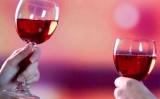 Werytas – specialistul vinurilor de calitate!