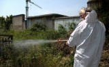 ACS Dezinsectie te scapa de daunatori