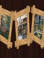 Rustic Lemn Design – specialistul mobilierului de calitate