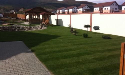 Toskana Garten – Servicii amenajari spatii verzi de inalta calitate