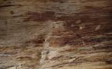 Metamob – expertul tau in prelucrarea lemnului