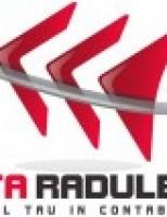 Conta Radulescu iti ofera servicii de contabilitate, in Bucuresti!