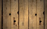 Zendol B protejeaza eficient lemnul