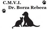 Medic veterinar CMVI Borza Rebeca!