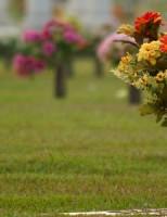 Cu ce se ocupa o agentie de servicii funerare