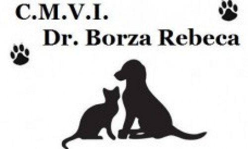 Cabinet veterinar pentru animalutul tau – C.M.V.I. Dr. Borza Rebeca!