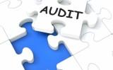 Ce este auditul intern si care este rolul lui