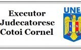 Executor judecatoresc Cotoi Cornel – executare silita conform legii!