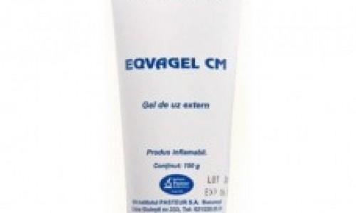 EQVAGEL 150 ML – un remediu ideal pentru ingrijirea cabalinelor