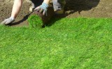 Gazon rulou – gazonare cu rulouri gazon
