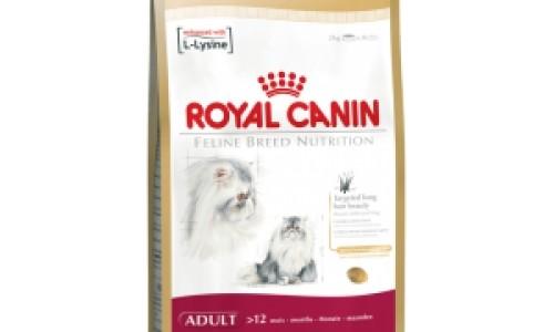 Petshopmall.ro va ofera hrana de caini royal canin