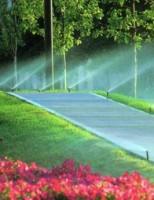 Sisteme irigatii, o necesitate pentru gradina si un comfort in plus pentru dvs