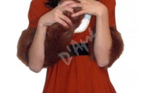 Aveti nevoie de un costum vulpe pentru o reprezentatie de exceptie? Intrati pe D'Apre.ro!