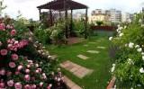 Gradina pe acoperis – terasa verde, dar si multe alte avantaje