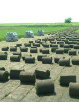 Rulouri de gazon de la Euro Glia – pentru spatii verzi de poveste!