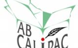 AB Calipac te asteapta cu ambalaje carton potrivite gusturilor tale !