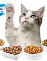 Hrana umeda pisici Novafood.ro