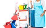 Cautati o firma de curatenie Bucuresti care sa va ajute in activitatile casnice si nu numai? Apelati cu incredere la Cribo Clean!