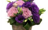 Aranjamente florale – Floraria Amazon te asteapta sa alegi ce iti place mai mult!