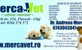 Cabinet Veterinar Merca Vet – ori de cate ori este nevoie de vaccinari animale!