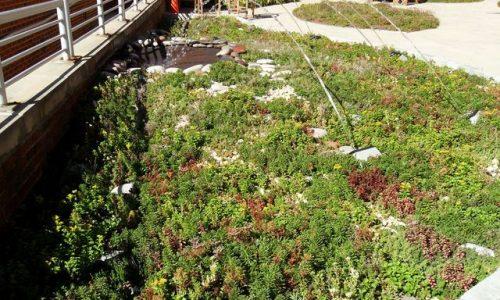Beneficii numeroase ce se pot asocia cu o terasa verde, obtineti-le acum!