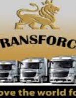 Transport agabaritic.  Transforce-¨Gigantii¨ soselelor