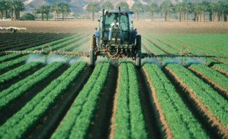 Importanta necontenita a agriculturii