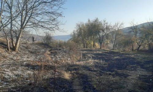 O femeie de 80 de ani a murit în flăcări